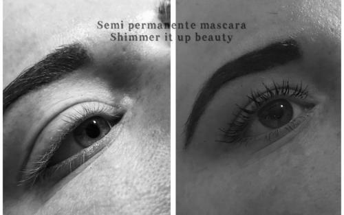 Semi Permanente Mascara (SPM)
